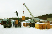Пиломатериалы из Украины от производителя - сосна. Ищем партнеров!