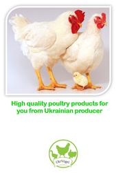 курятина из Украины. импорт